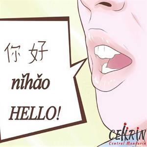 Belajar Bunyi Vokal Mandarin Tunggal